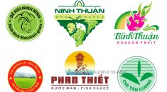 hu-tuc-sua-doi-và-chuyen-nhuong-don-dang-ky-nhan-hieu1